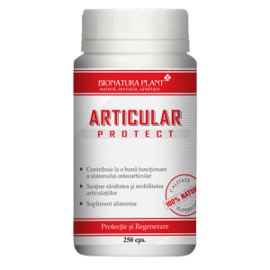 articular_protect