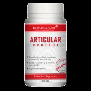 articular_protect