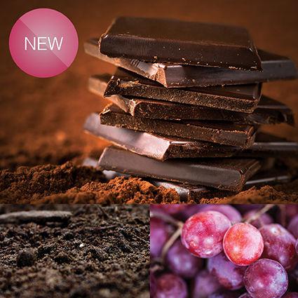 Ciocolata neagra cu acid humic si samburi de struguri – 27 buc Imagine 1