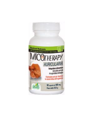 Micotherapy  Auricularia – 90 capsule Imagine 1