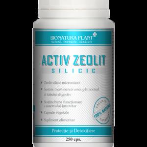 activ_zeolit_silicic