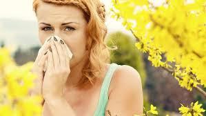 alergiideprimavara17318
