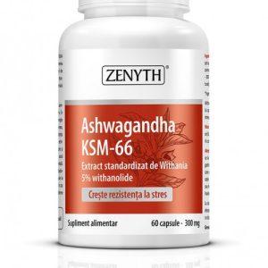 Ashwagandha-KSM-66-copy-500x701