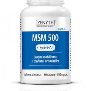 MSM-500-copy-500x701