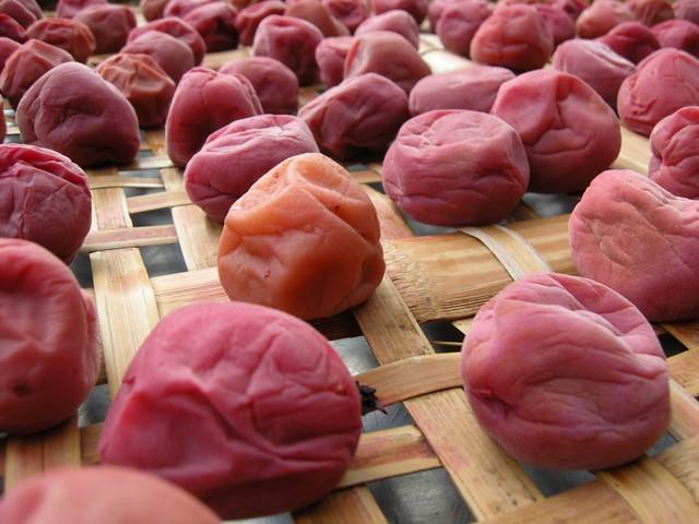 Prunele umeboshi sunt o delicatesă, fiind consumate de secole de japonezi.